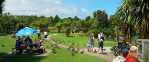 Nga Manu Nature Reserve - Waikanae