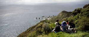 Look out at Kapiti Island